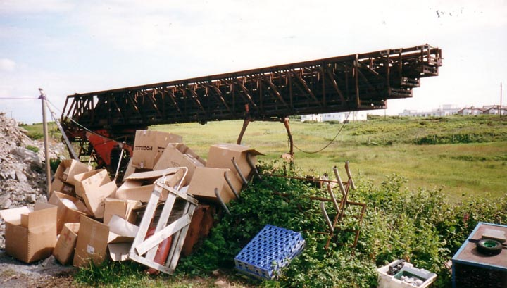 Turn Table Ladder