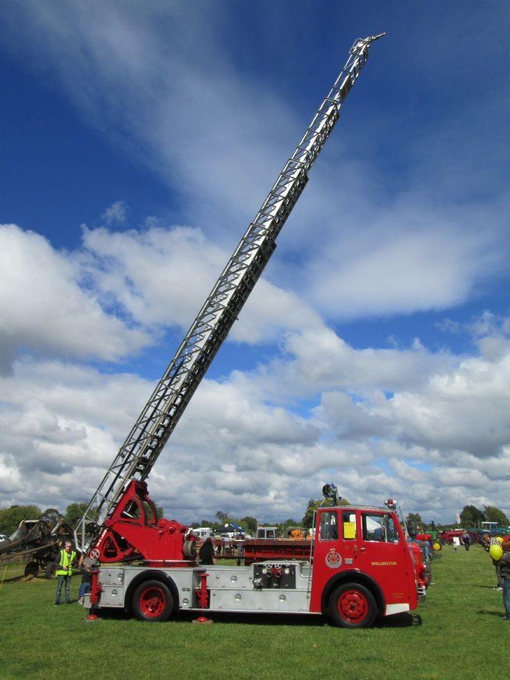 New Zealand Wellington Dennis F14 ladder