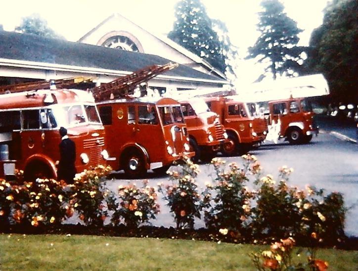 old Cheltenham line up